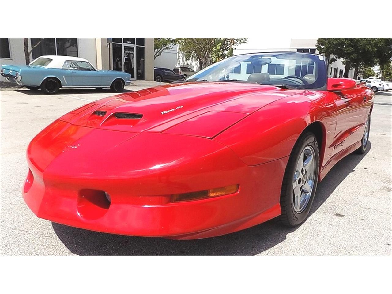 1997 Pontiac Firebird Trans Am WS6 (CC-1223797) for sale in POMPANO BEACH, Florida