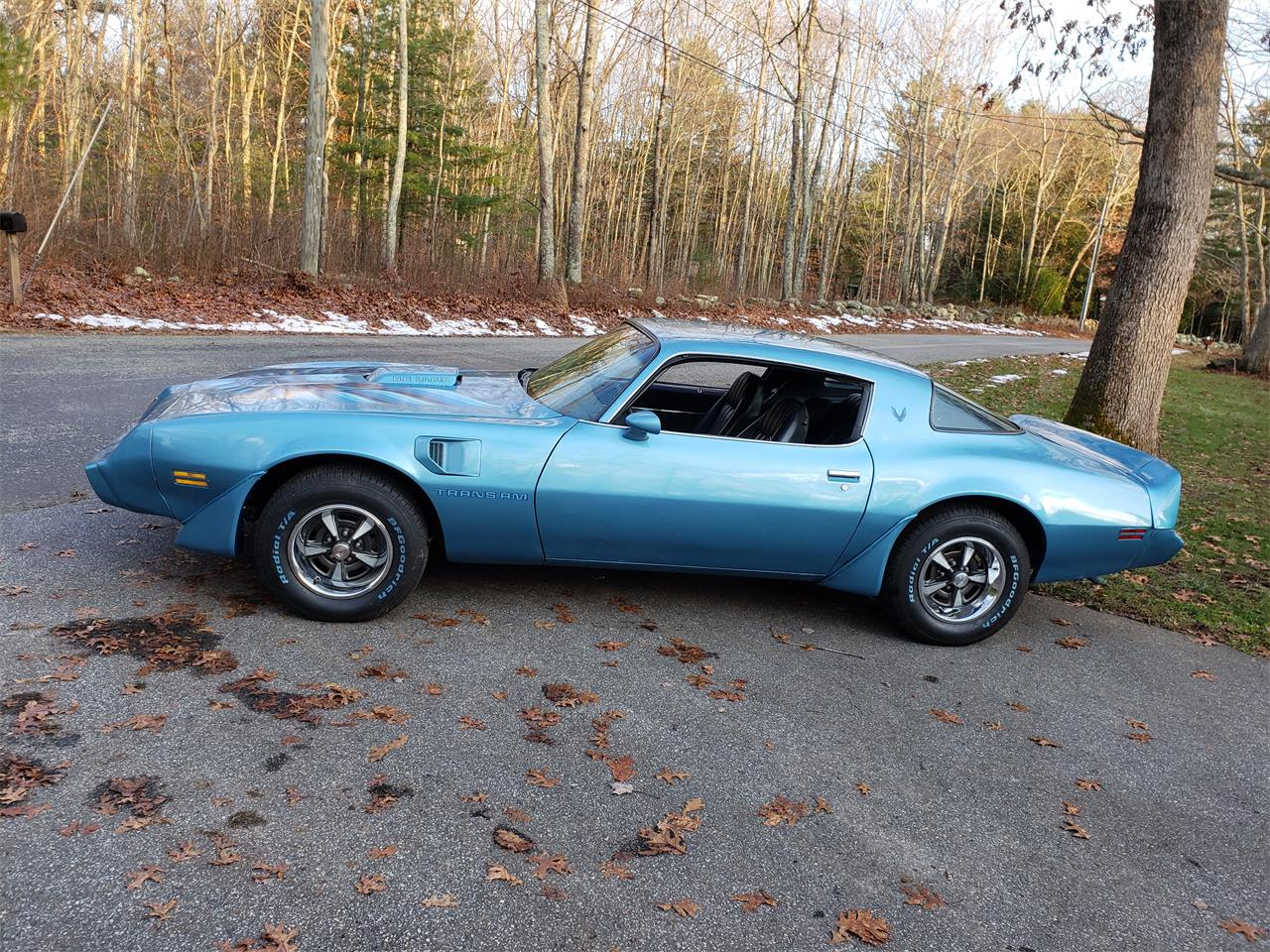 1979 Pontiac Firebird Trans Am (CC-1223982) for sale in Baltic, Connecticut