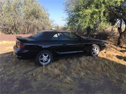 2006 Ford Mustang II Cobra (CC-1224002) for sale in Morristown, Arizona