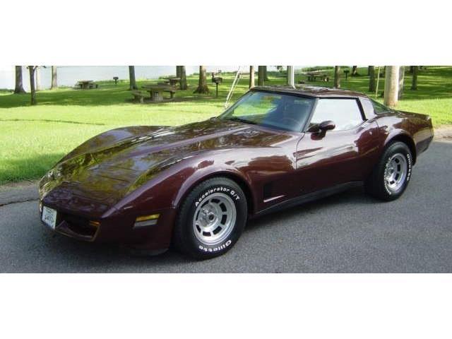 1981 Chevrolet Corvette (CC-1224409) for sale in Hendersonville, Tennessee