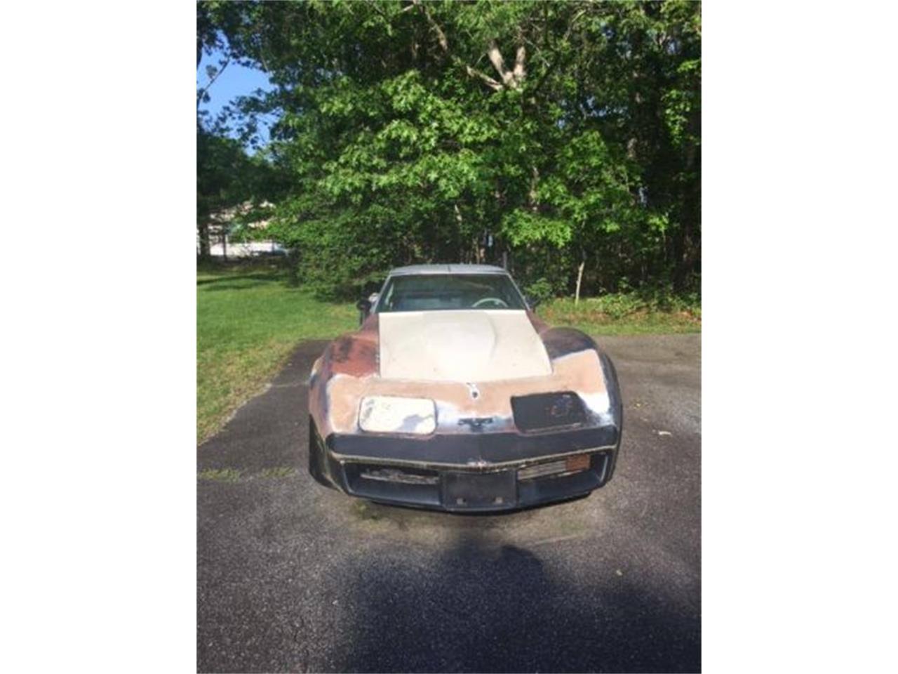 1981 Chevrolet Corvette (CC-1225402) for sale in Cadillac, Michigan