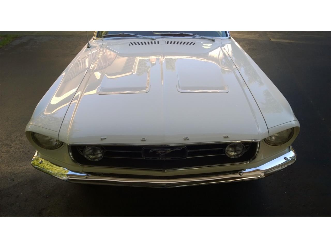 1967 Ford Mustang GT (CC-1226497) for sale in Brisbane, QLD