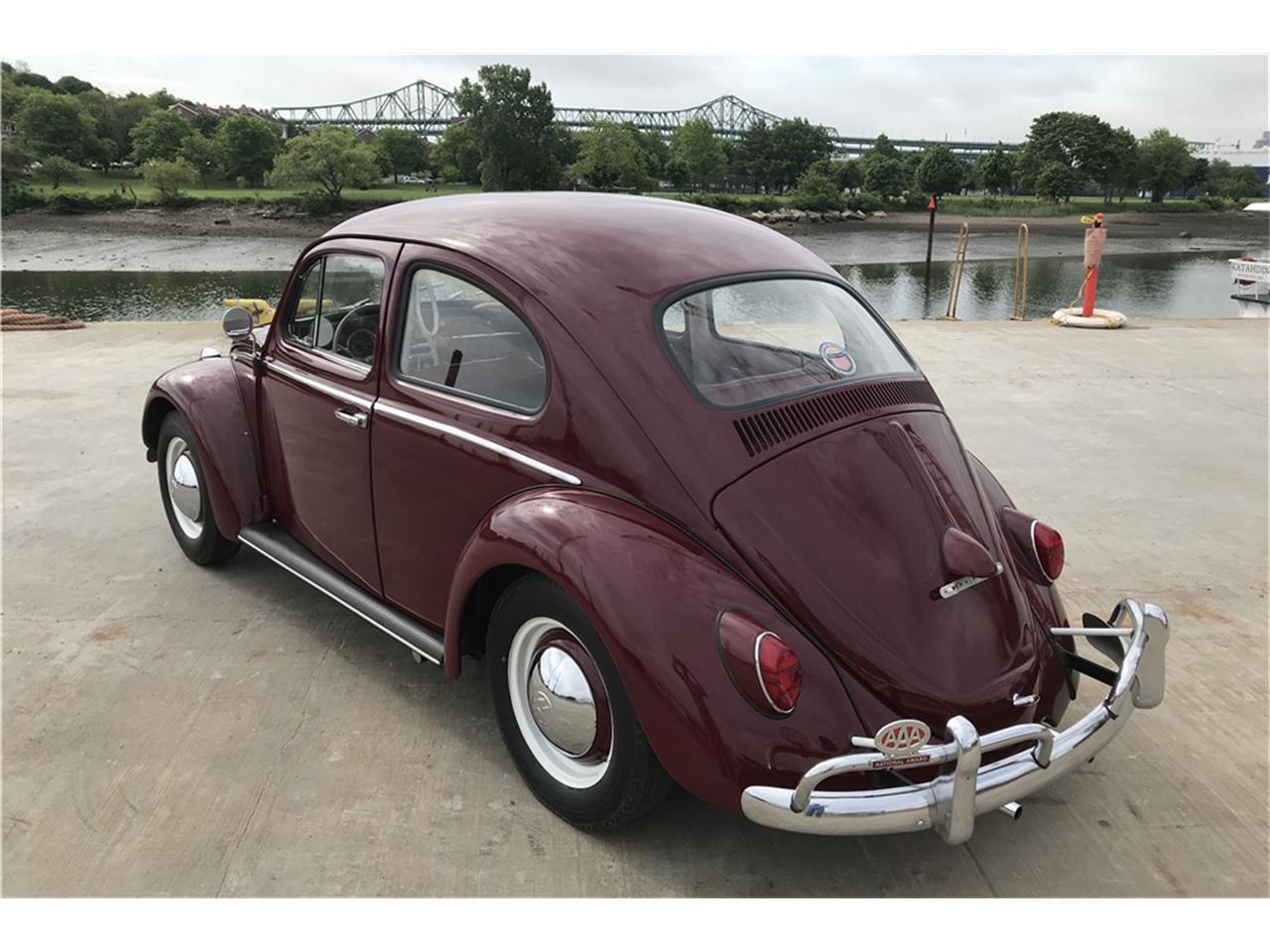 1961 Volkswagen Beetle (CC-1227002) for sale in Uncasville, Connecticut