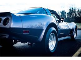 1979 Chevrolet Corvette (CC-1227557) for sale in O'Fallon, Illinois