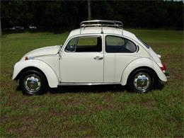 1972 Volkswagen Beetle (CC-1227931) for sale in Palmetto, Florida