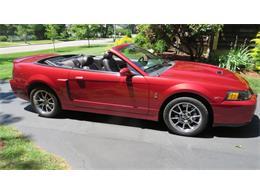 2004 Ford Mustang SVT Cobra (CC-1228344) for sale in Hanson, Massachusetts