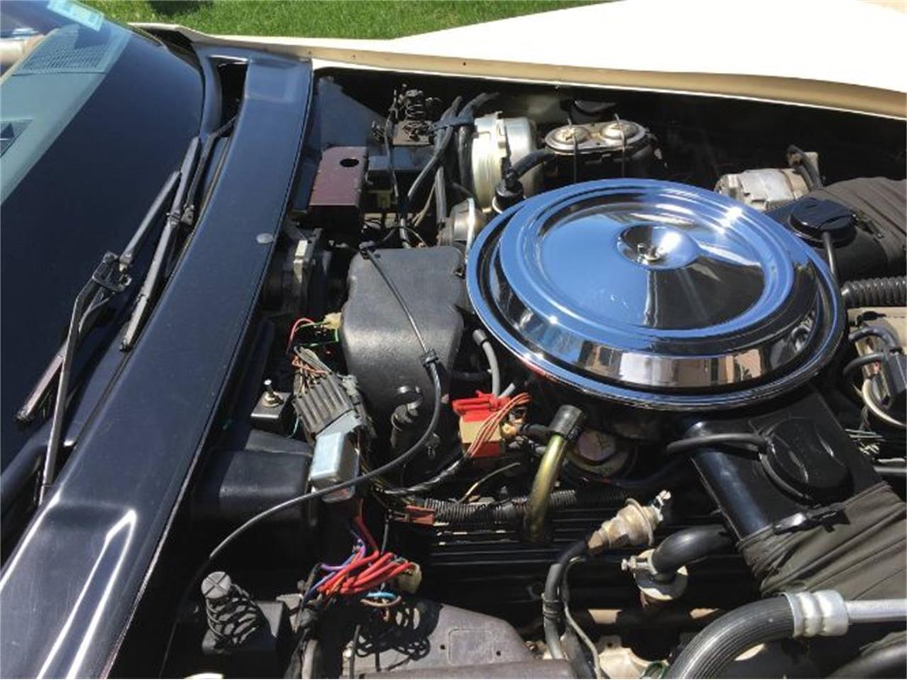 1981 Chevrolet Corvette (CC-1220922) for sale in Cadillac, Michigan