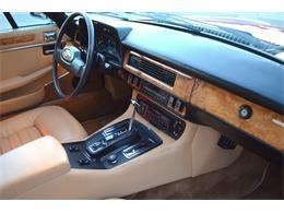 1985 Jaguar XJS (CC-1229358) for sale in Chandler , Arizona