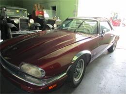 1994 Jaguar XJ (CC-1232223) for sale in Miami, Florida