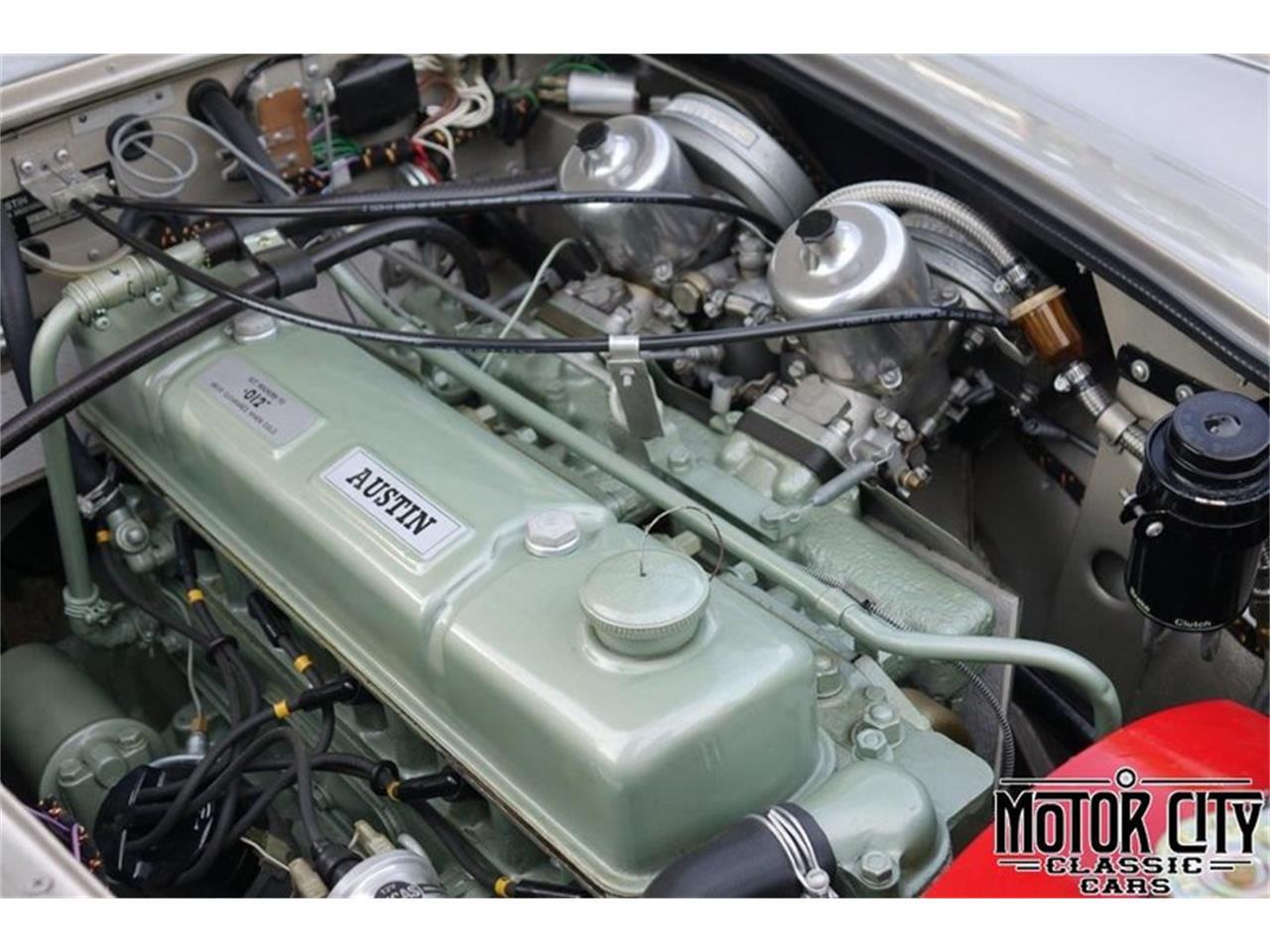 1965 Austin-Healey 3000 Mark III BJ8 (CC-1232309) for sale in Vero Beach, Florida