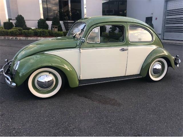 1954 Volkswagen Beetle (CC-1230283) for sale in Cadillac, Michigan