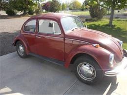 1969 Volkswagen Beetle (CC-1233158) for sale in Cadillac, Michigan
