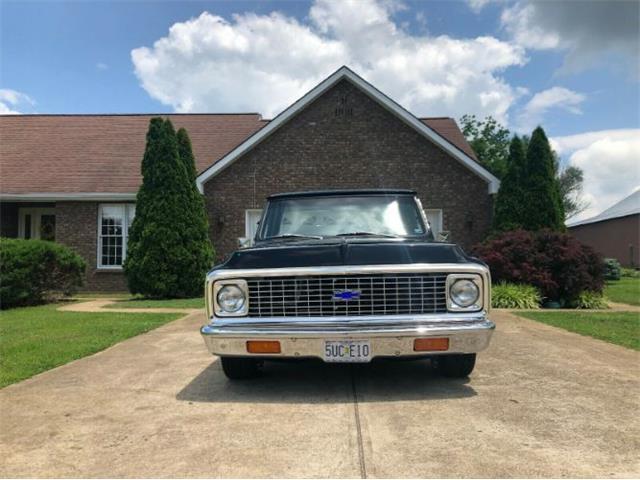 1969 Chevrolet C10 (CC-1233182) for sale in Cadillac, Michigan