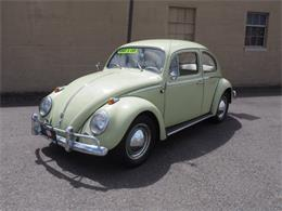 1962 Volkswagen Beetle (CC-1233278) for sale in Tacoma, Washington