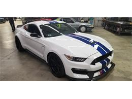2017 Shelby GT350 (CC-1233298) for sale in Chatsworth, California