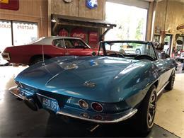 1966 Chevrolet Corvette (CC-1234237) for sale in Jacksonville, Florida
