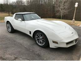 1980 Chevrolet Corvette (CC-1236176) for sale in Cadillac, Michigan
