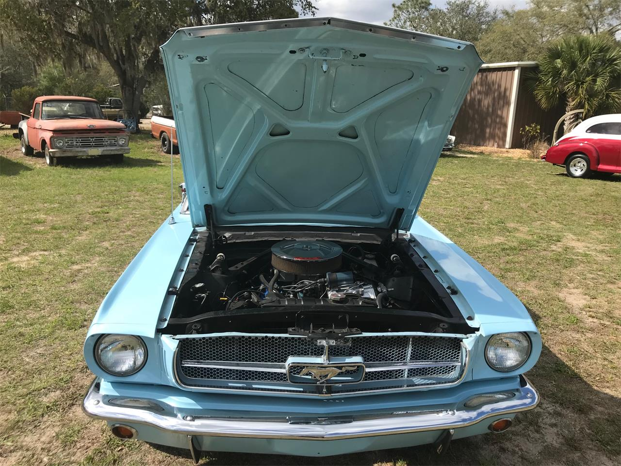 1964 Ford Mustang (CC-1236769) for sale in Floral City, Florida