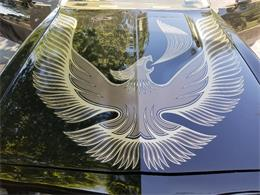 1981 Pontiac Firebird Trans Am (CC-1237133) for sale in VALLEY COTTAGE, New York