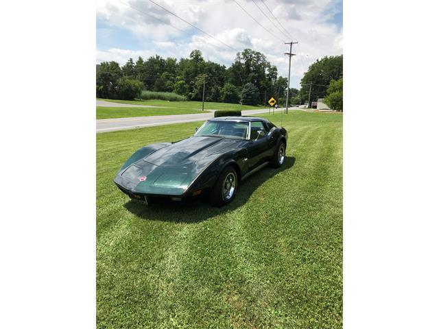 1974 Chevrolet Corvette (CC-1237686) for sale in Blandon, Pa.