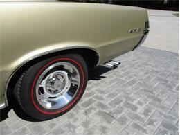 1965 Pontiac GTO (CC-1238261) for sale in Greensboro, North Carolina