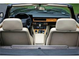 1991 Jaguar XJ (CC-1238528) for sale in Hilton, New York