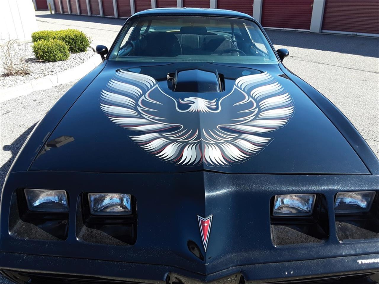1979 Pontiac Firebird Trans Am (CC-1238557) for sale in Auburn, Indiana