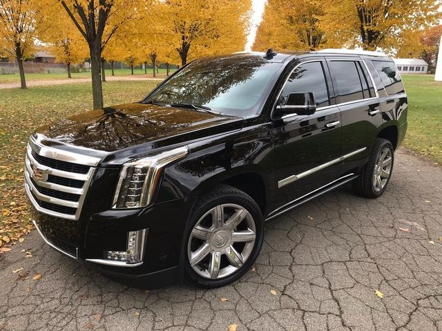 2016 Cadillac Escalade (CC-1241894) for sale in Shelby Township, Michigan