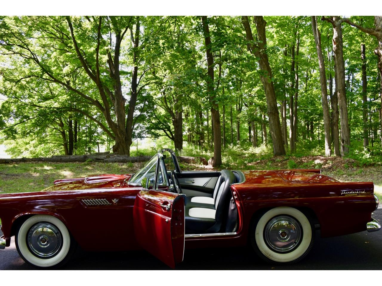 1955 Ford Thunderbird (CC-1242652) for sale in Traverse City, Michigan