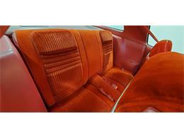 1981 Pontiac Firebird Trans Am (CC-1242756) for sale in Annandale, Minnesota
