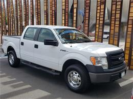 2013 Ford F150 (CC-1243674) for sale in Seattle, Washington