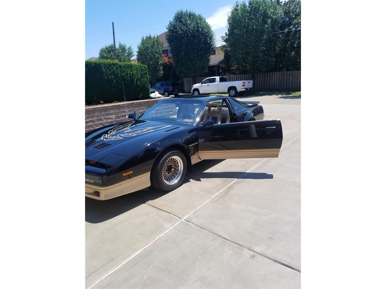 1986 Pontiac Firebird Trans Am (CC-1244588) for sale in Springdale, Pennsylvania
