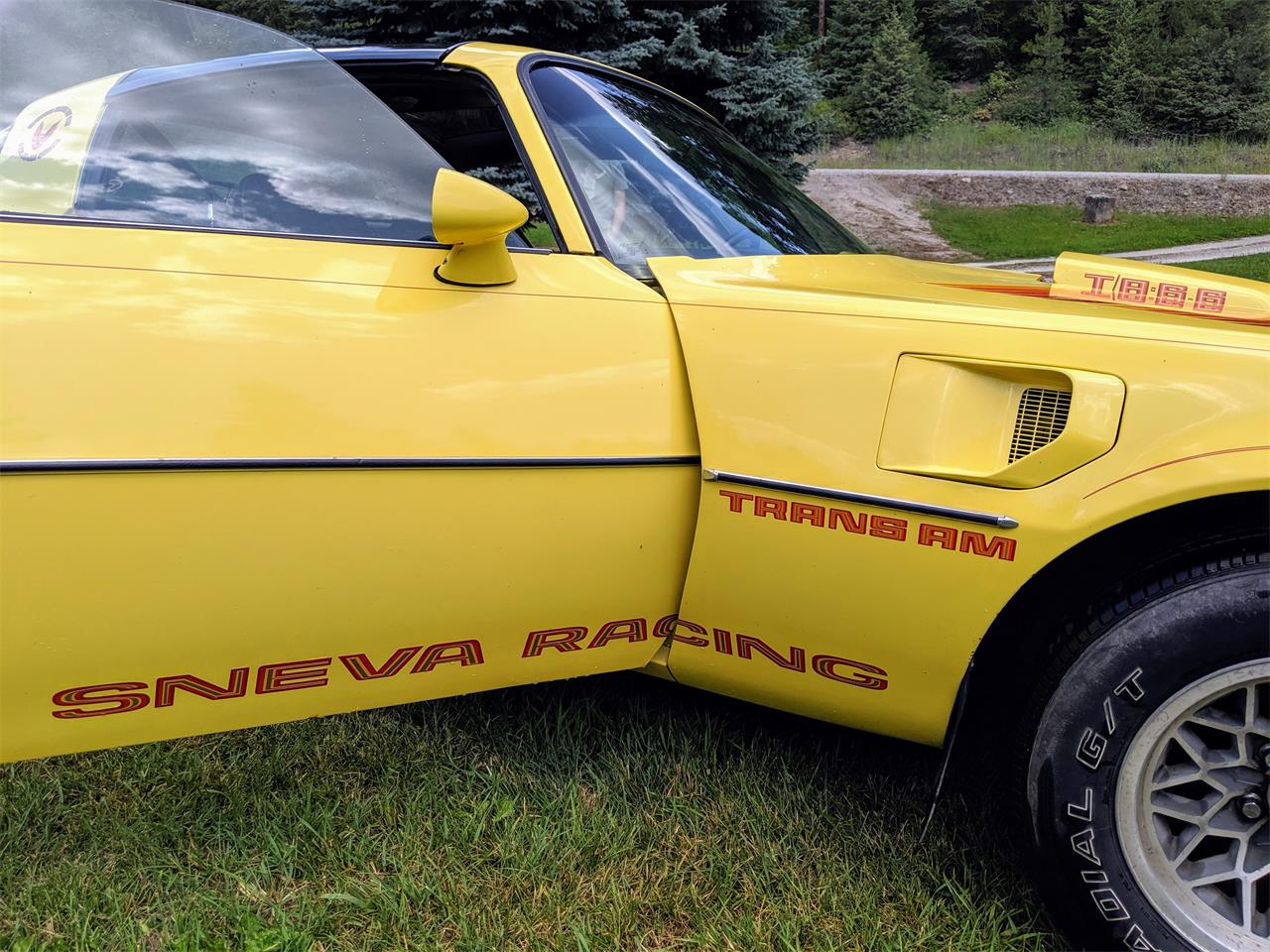 1979 Pontiac Firebird Trans Am (CC-1240484) for sale in Spokane, Washington