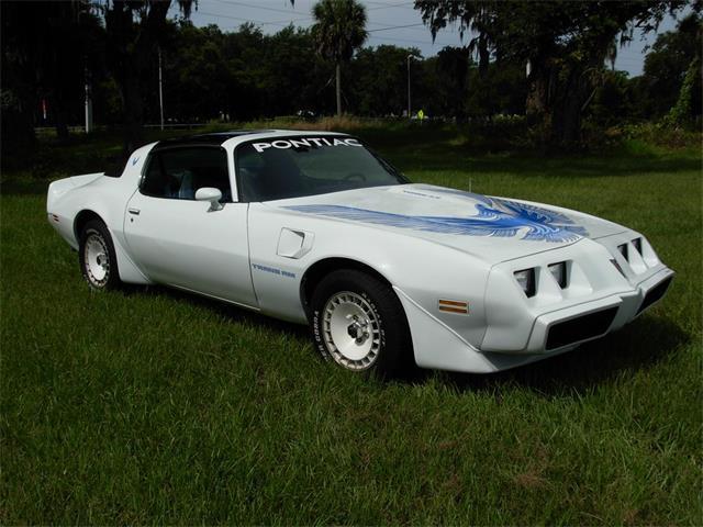 1981 Pontiac Firebird (CC-1245397) for sale in Palmetto, Florida