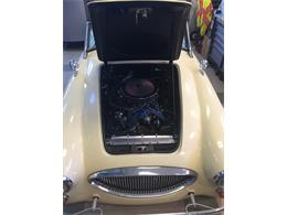 1964 Austin-Healey Sebring (CC-1245811) for sale in Missoula, Montana