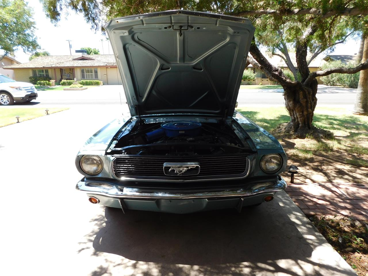 1966 Ford Mustang (CC-1245887) for sale in Tempe, Arizona