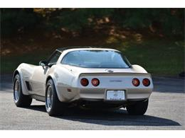 1982 Chevrolet Corvette (CC-1246113) for sale in Cookeville, Tennessee