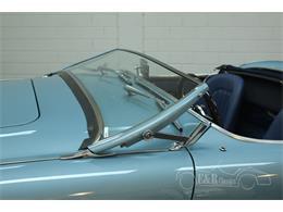 1955 Austin-Healey 100-4 BN2 (CC-1246155) for sale in Waalwijk, Noord-Brabant