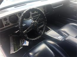 1981 Pontiac Firebird Trans Am (CC-1246185) for sale in jacksonville, Florida