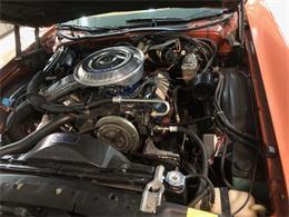 1979 Ford Thunderbird (CC-1246241) for sale in Scottsdale, Arizona