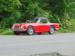 1962 Triumph TR4 (CC-1247004) for sale in Bridgeport, Connecticut