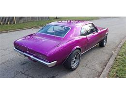 1967 Pontiac Firebird (CC-1247150) for sale in malone, New York