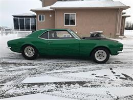 1967 Chevrolet Camaro (CC-1247209) for sale in CALGARY, Alberta