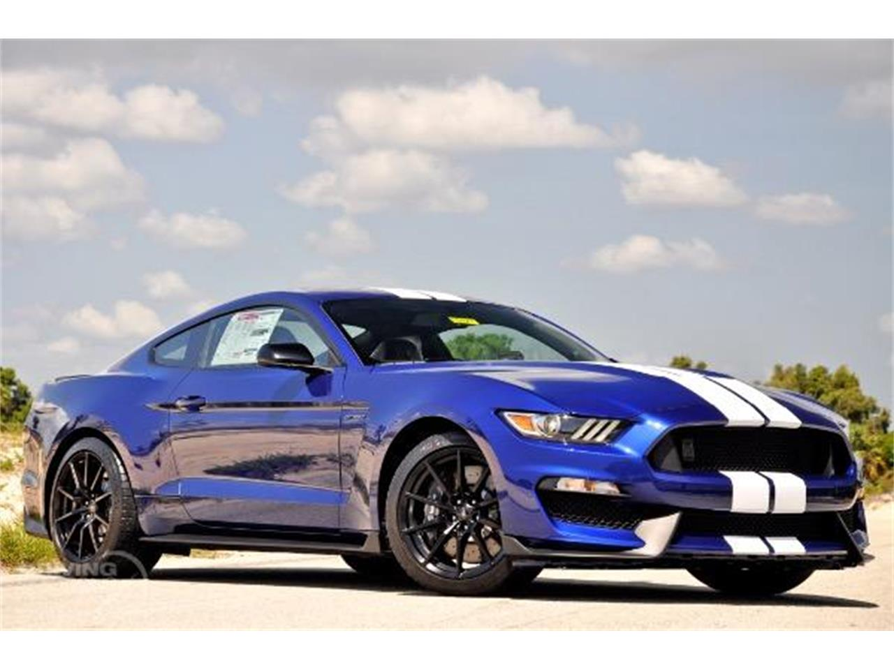 2015 Shelby GT350 (CC-1247529) for sale in West Palm Beach, Florida