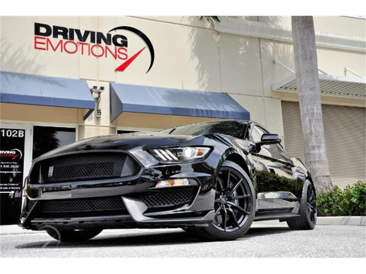 2015 Shelby GT350 (CC-1247531) for sale in West Palm Beach, Florida