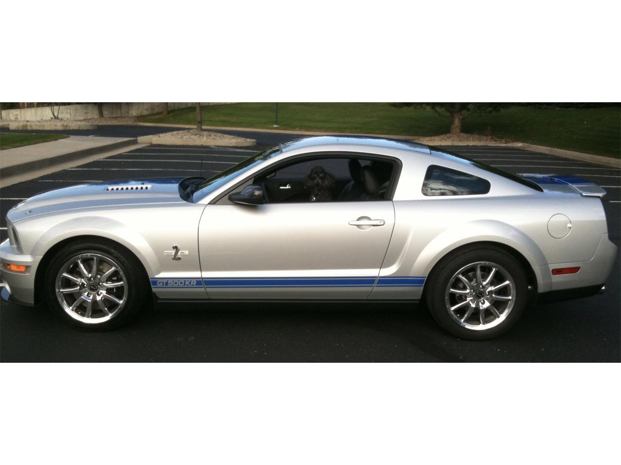 2008 Shelby GT500 (CC-1240841) for sale in COLORADO SPRINGS, Colorado