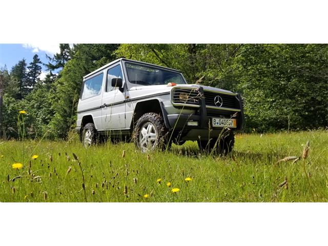 1991 Mercedes-Benz G-Class (CC-1248741) for sale in Portland, Oregon