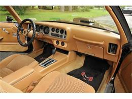 1981 Pontiac Firebird Trans Am (CC-1249477) for sale in Saratoga Springs, New York