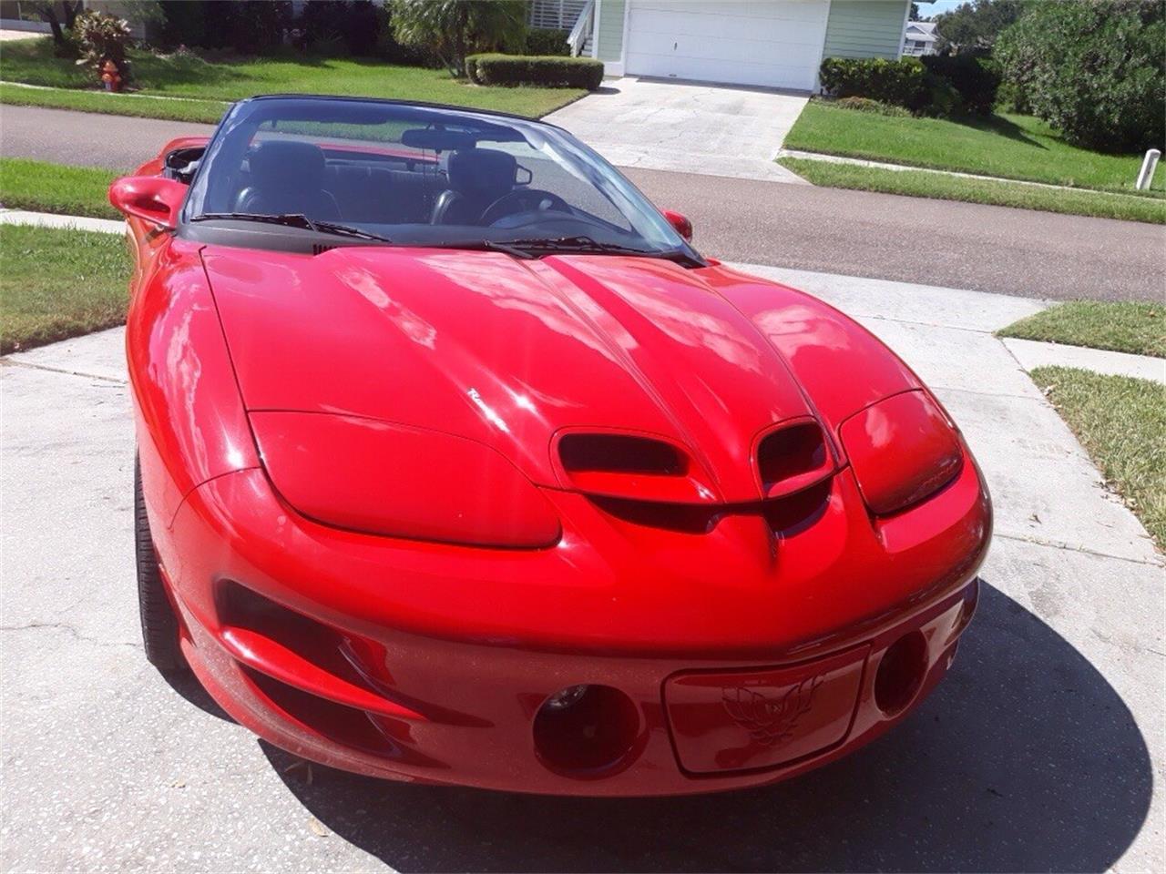 2001 Pontiac Firebird Trans Am WS6 (CC-1251727) for sale in Tarpon Springs, Florida