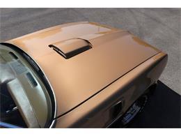 1978 Pontiac Firebird Trans Am (CC-1251742) for sale in Alsip, Illinois